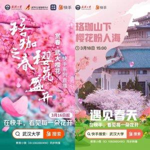 """武汉大学初樱绽放  700万快手老铁""""在珈""""赏花"""